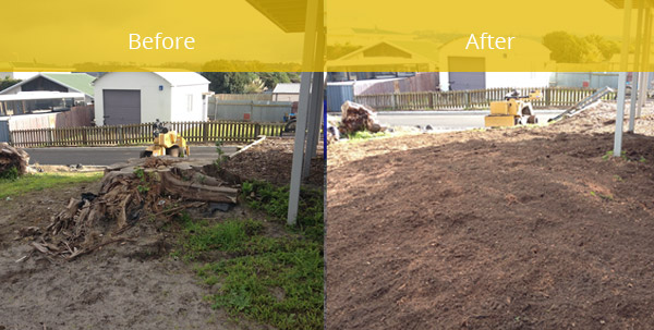 Image showing before and after of tree root removal