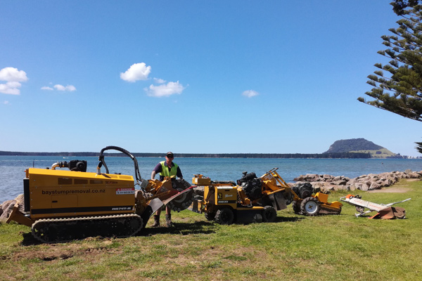 Group photo of stump grinding machines